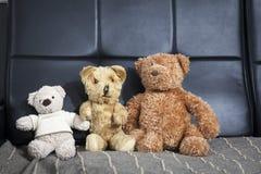 Família do peluche-urso velho do vintage três que senta-se no sofá Imagens de Stock Royalty Free