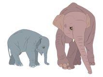 Família dos elefantes. ilustração royalty free