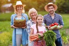 Família dos fazendeiros com os vegetais crescidos orgânicos Imagem de Stock