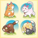 Família dos gatos Fotos de Stock