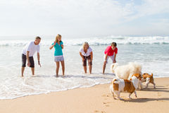 Família e animal de estimação Fotografia de Stock