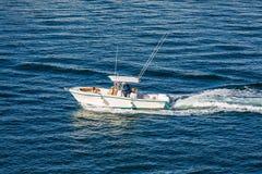 Família e cão no barco da velocidade foto de stock royalty free