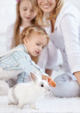 Família e um coelho branco pequeno Fotos de Stock Royalty Free