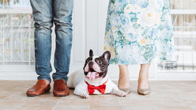 Família encantadora foto de stock royalty free