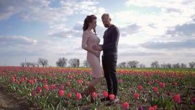 Família expectante feliz, espera nova dos pares do bebê que toca no estômago e nas férias do prazer da tomada no gramado da tulip filme