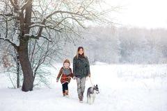 A família feliz anda com os cães de puxar trenós de um cachorrinho fotos de stock