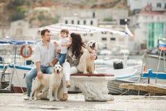 Família feliz com os cães no cais no verão Foto de Stock