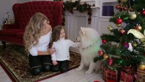 A família feliz comemora o Natal com cão em casa filme