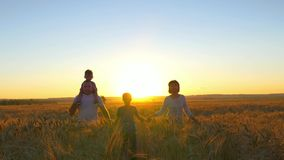 A família feliz está andando ao longo de um campo de trigo em um fundo do por do sol Fotos de Stock Royalty Free