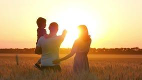 Família feliz: a mamã, o paizinho e o bebê são ponto no por do sol, ao estar em um campo de trigo O pai guarda seu filho no seu video estoque