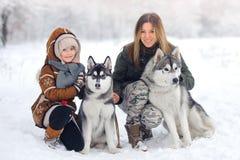 A família feliz na madeira do inverno joga cães de puxar trenós com um cão Madeira bonita da neve imagens de stock royalty free