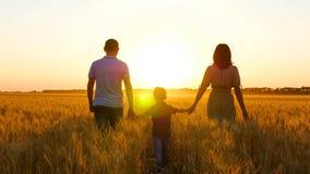 Família feliz: o pai, a mãe e pouco filho estão no campo de trigo, guardando as mãos Silhueta de um homem, de uma mulher e de uma imagens de stock royalty free