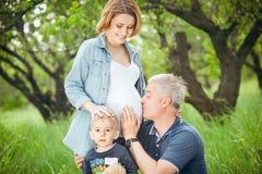 Família feliz Pai que beija a barriga da esposa grávida Fotos de Stock Royalty Free