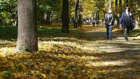 Família feliz que anda ao longo da pista do parque em um dia do outono Lapso de tempo filme