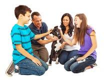 Família feliz que dá boas-vindas a um cão novo fotos de stock