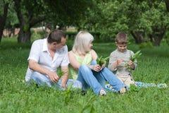 Família feliz que senta-se no parque Fotos de Stock