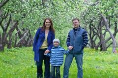 A família feliz tem o divertimento no jardim da maçã Imagem de Stock
