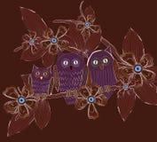 Família grande das corujas dos olhos na noite Imagem de Stock