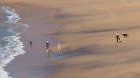 Família irreconhecível que anda ao longo da praia Imagens de Stock Royalty Free