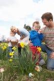 Família na caça do ovo de Easter no campo do Daffodil Imagem de Stock