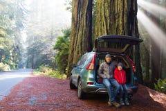 Família na floresta da sequoia vermelha fotos de stock royalty free