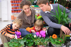 Família na loja de flor Foto de Stock