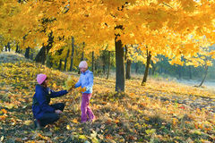 Família no parque do bordo do outono Imagem de Stock Royalty Free