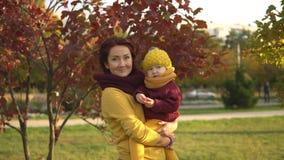 Família no parque ensolarado do outono vídeos de arquivo