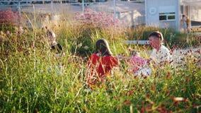 Família no parque A filha senta-se em seus joelhos ao papa, as caminhadas do filho de lado a lado Tiro dos arbustos bonitos vídeos de arquivo