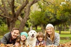 Família nova com um cão fotos de stock