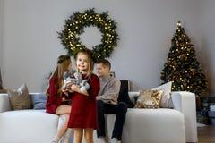 Família nova com uma filha no fundo de um Natal tr imagens de stock royalty free