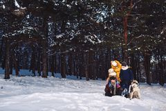 Família nova europeia feliz com o cão grande que levanta contra a floresta do pinho do inverno fotografia de stock