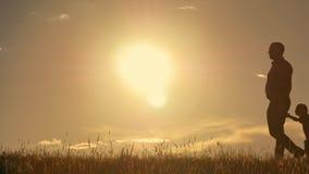Família nova feliz com as crianças que correm em torno do campo, silhueta no por do sol Imagens de Stock Royalty Free
