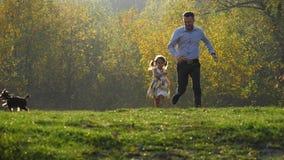 Família nova feliz que corre no parque do outono com seu cão pequeno vídeos de arquivo