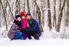 Família nova feliz que levanta no parque da neve imagem de stock