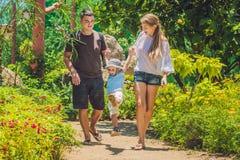 Família nova feliz que passa o tempo exterior em um dia de verão Fotos de Stock Royalty Free