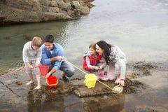 Família nova na praia que coleta escudos fotografia de stock
