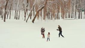 Família nova que joga e que tem o divertimento na neve vídeos de arquivo