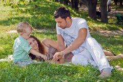 Família nova que relaxa no parque Fotos de Stock