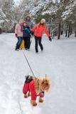 Família para uma caminhada no inverno foto de stock royalty free