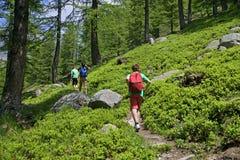 Família que anda em um trajeto na montanha Fotografia de Stock Royalty Free
