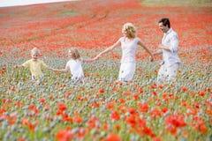 Família que anda nas mãos da terra arrendada do campo da papoila Fotografia de Stock