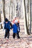 Família que anda nas madeiras Foto de Stock