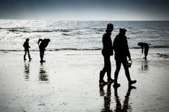 Família que aprecia o beira-mar que anda e que escava na praia Fotos de Stock Royalty Free