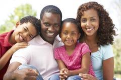 Família que aprecia o dia no parque foto de stock royalty free