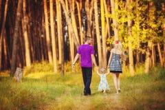 Família que comemora a festa de anos no parque verde fora Fotografia de Stock Royalty Free