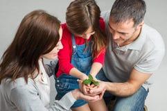 Família que cresce junto fotos de stock royalty free
