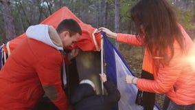 Família que faz o acampamento na floresta video estoque