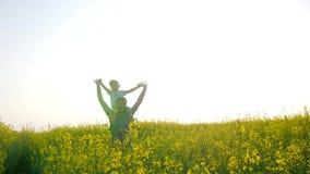 A família que joga no dia ensolarado na natureza, criança senta-se em ombros gena no prado na grama, paizinho feliz com menino de vídeos de arquivo