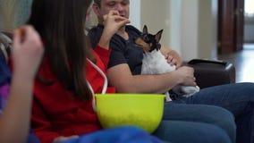 Família que olha a tevê e que alimenta o cão com pipoca video estoque